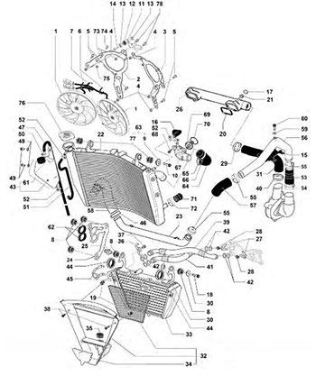 Yamaha Bike Diagram