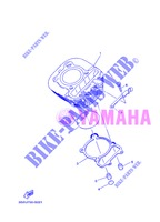 CYLINDER for Yamaha AG 200 FE 2013
