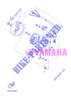 IGNITION for Yamaha CW50 2013