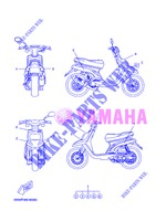 STICKER for Yamaha CW50 2013