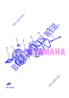 CYLINDER for Yamaha PW50 2013