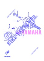 CRANKSHAFT / PISTON for Yamaha VP250 2013