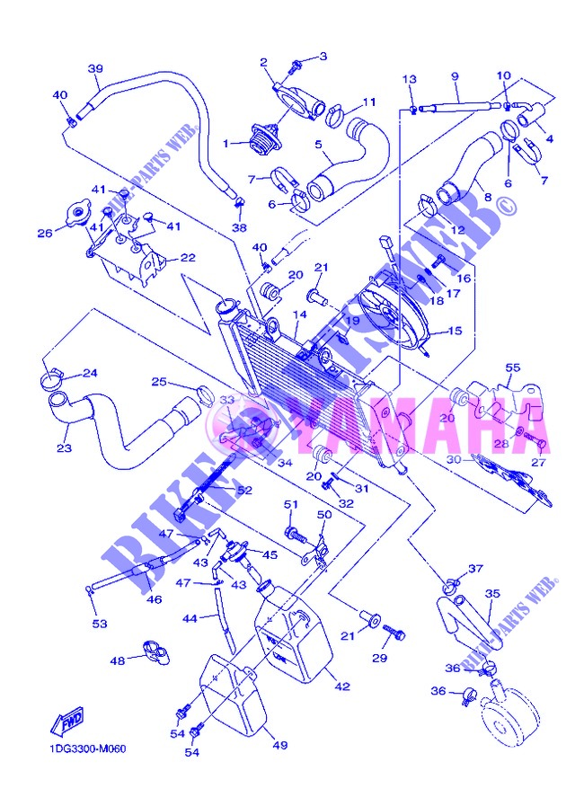RADIATOR / HOSES for Yamaha DIVERSION 600 F ABS 2013