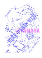 RADIATOR / HOSES for Yamaha XP500A 2013